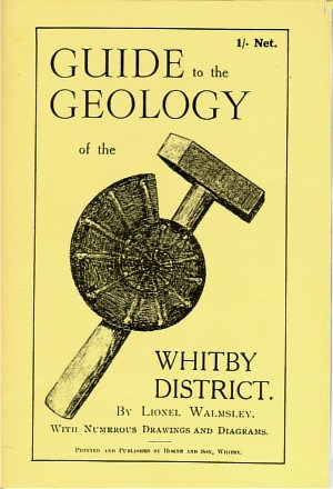 Geology book cover image